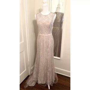 Vera Wang Silver Lace Blush Tulle Dress